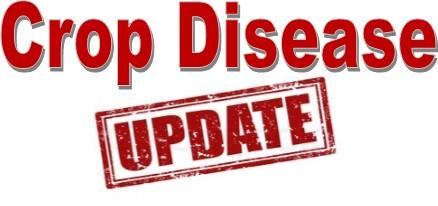 Crop Disease Update
