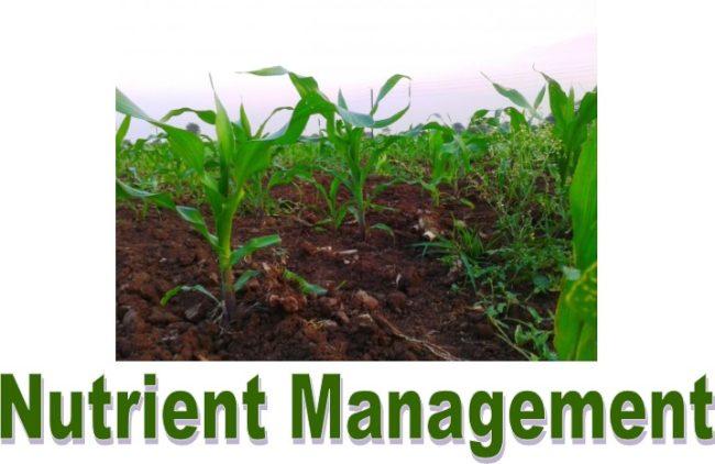 Nutrient Management